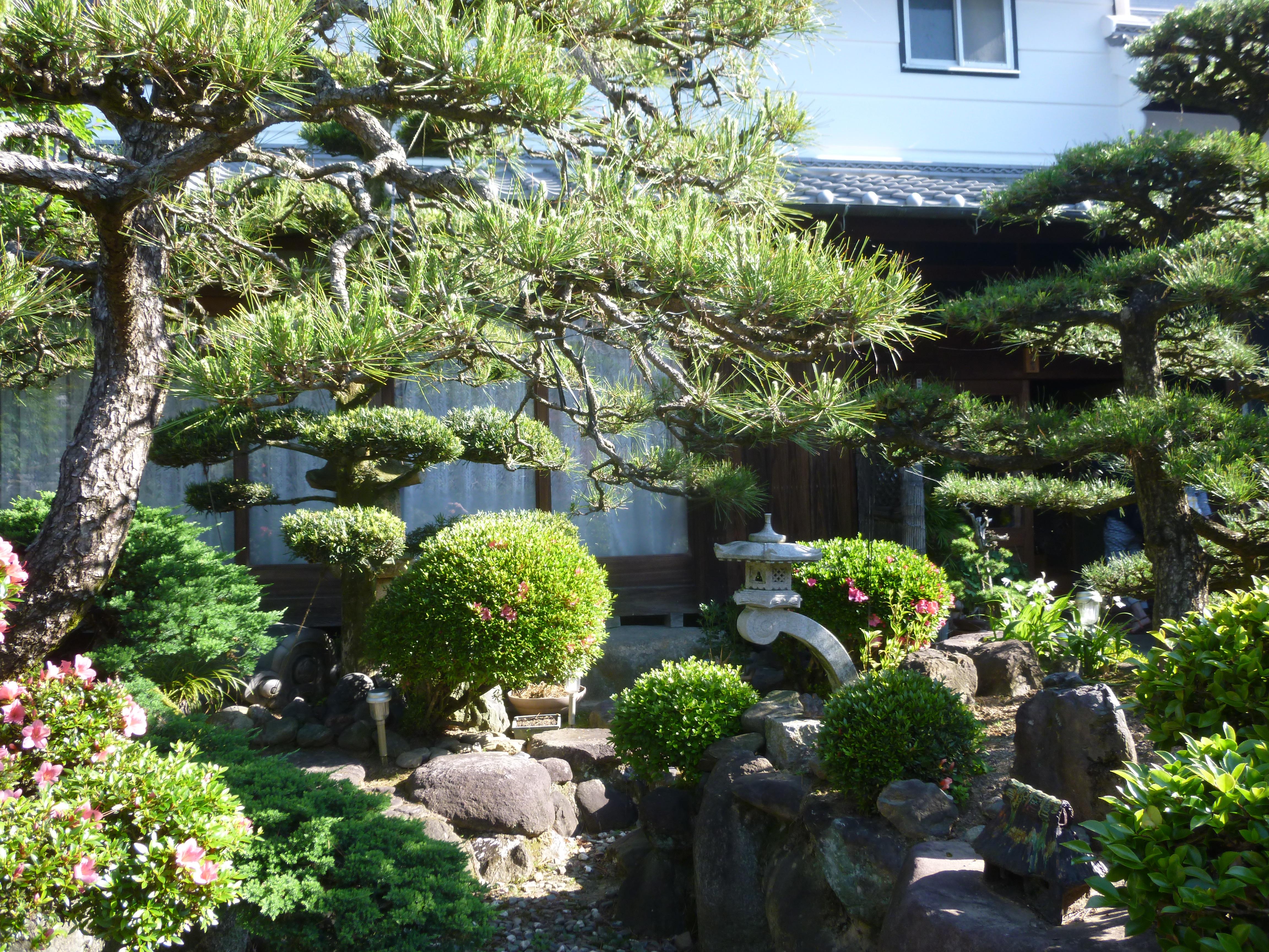 Escapade champêtre à ASUKA