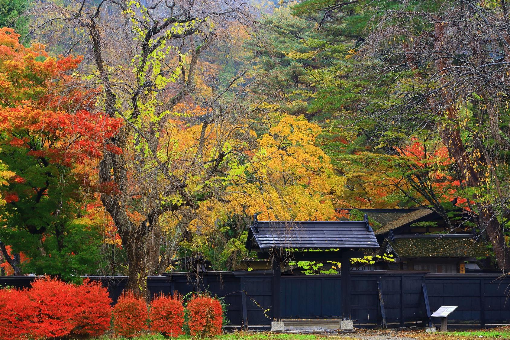 Contrées du Nord avec Dewa Sanzan et les temples de Hiraizumi